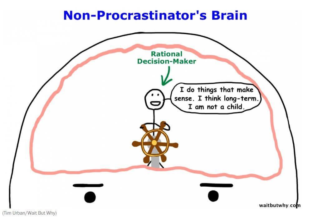 non-brain