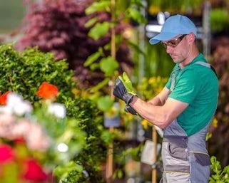 Garten- und Laundschaftsbau